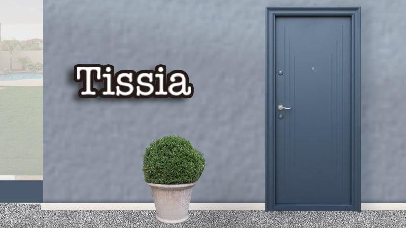 Usa metalica exterior Tissia