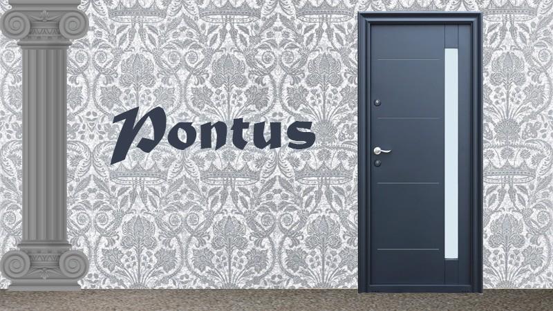 Usa metalica exterior Pontus