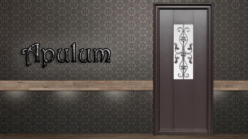 Usa metalica exterior Apulum- Usa metalica exterior Brasov