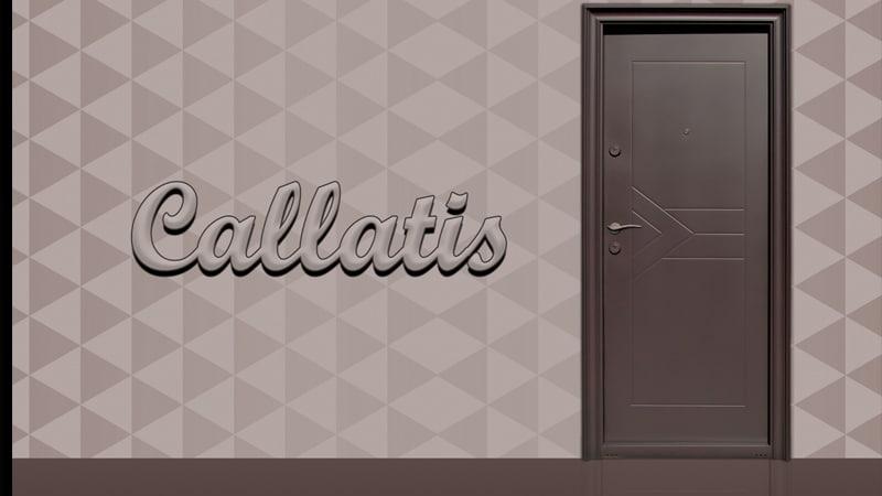Usa metalica exterior Callatis - Usa metalica exterior Brasov