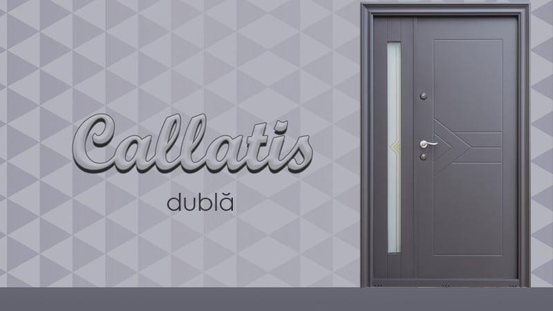 Usa metalica exterior Callatis dubla - Usa metalica exterior Brasov
