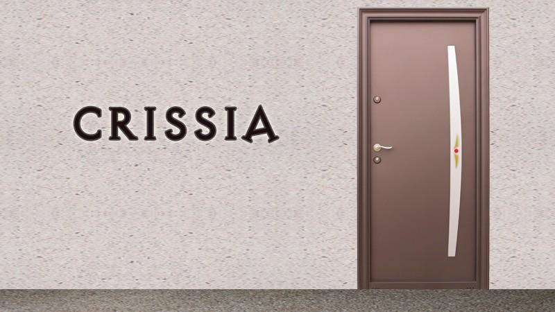 Usa metalica exterior Crissia - Usa metalica exterior Brasov