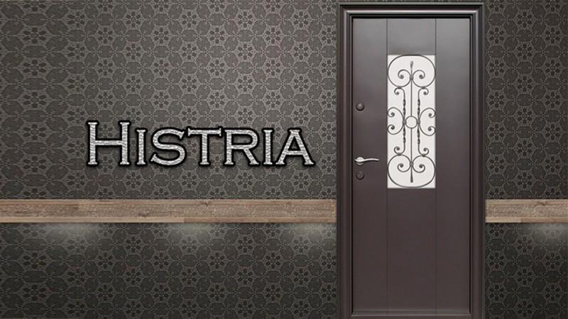 Usa metalica exterior Histria dubla - Usa metalica exterior Brasov