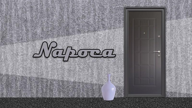 Usa-metalica-exterior-Napoca-Usa-metalica-exterior-Brasov